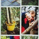 Budowa łuku w ogrodzie